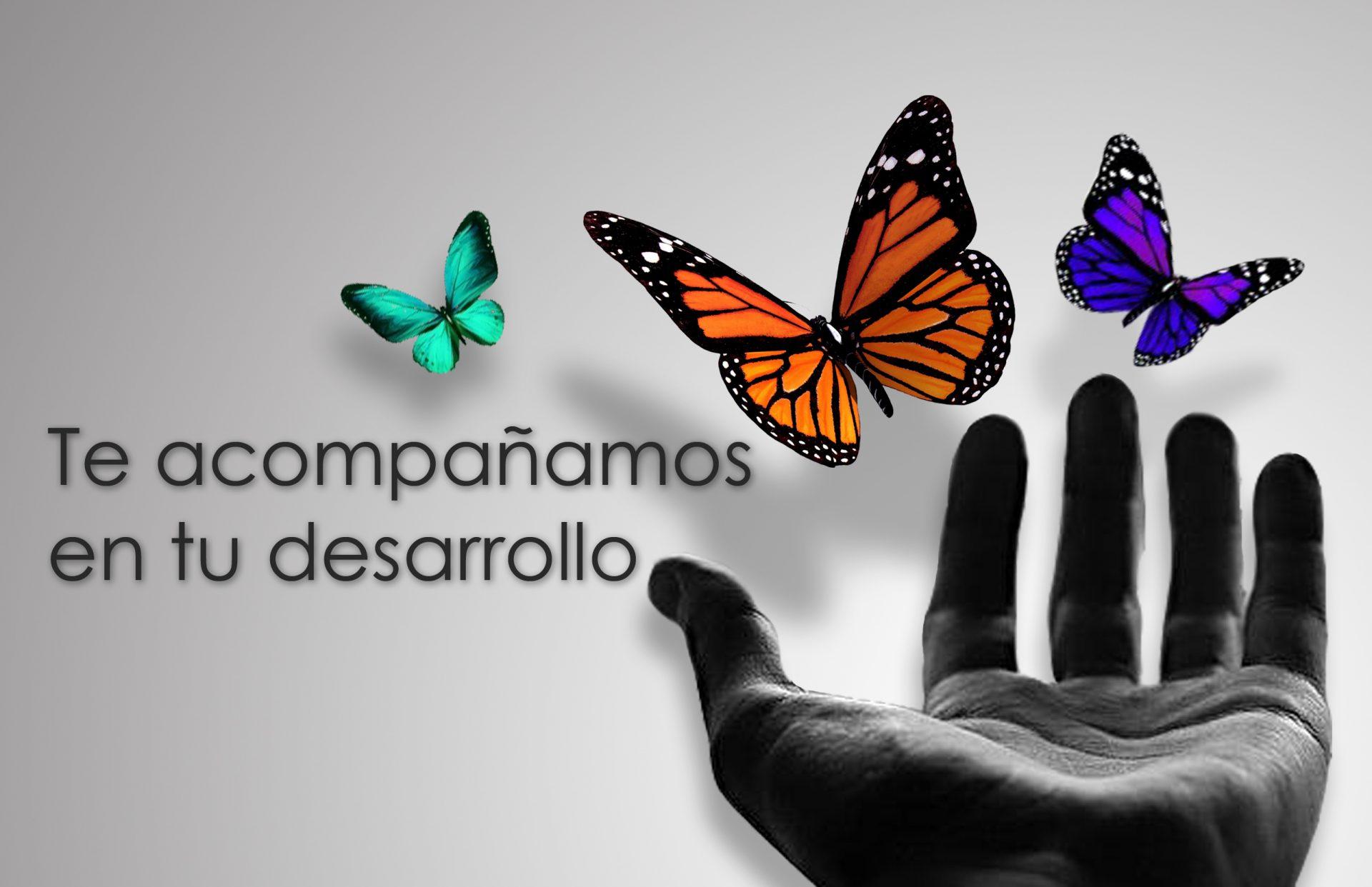 Te acompañamos en tu desarrollo. Psicólogo en Puerta de Hierro, Moncloa, Aravaca, Las Rozas, Torrelodones