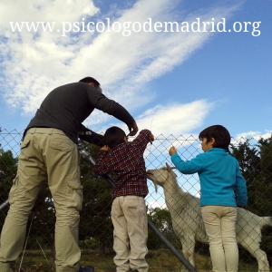 Acompaña a tu hijo en su desarrollo. Claves para ello en nuestra escuela de padres en Madrid, Moncloa, Aravaca, Torrelodones, Las Rozas