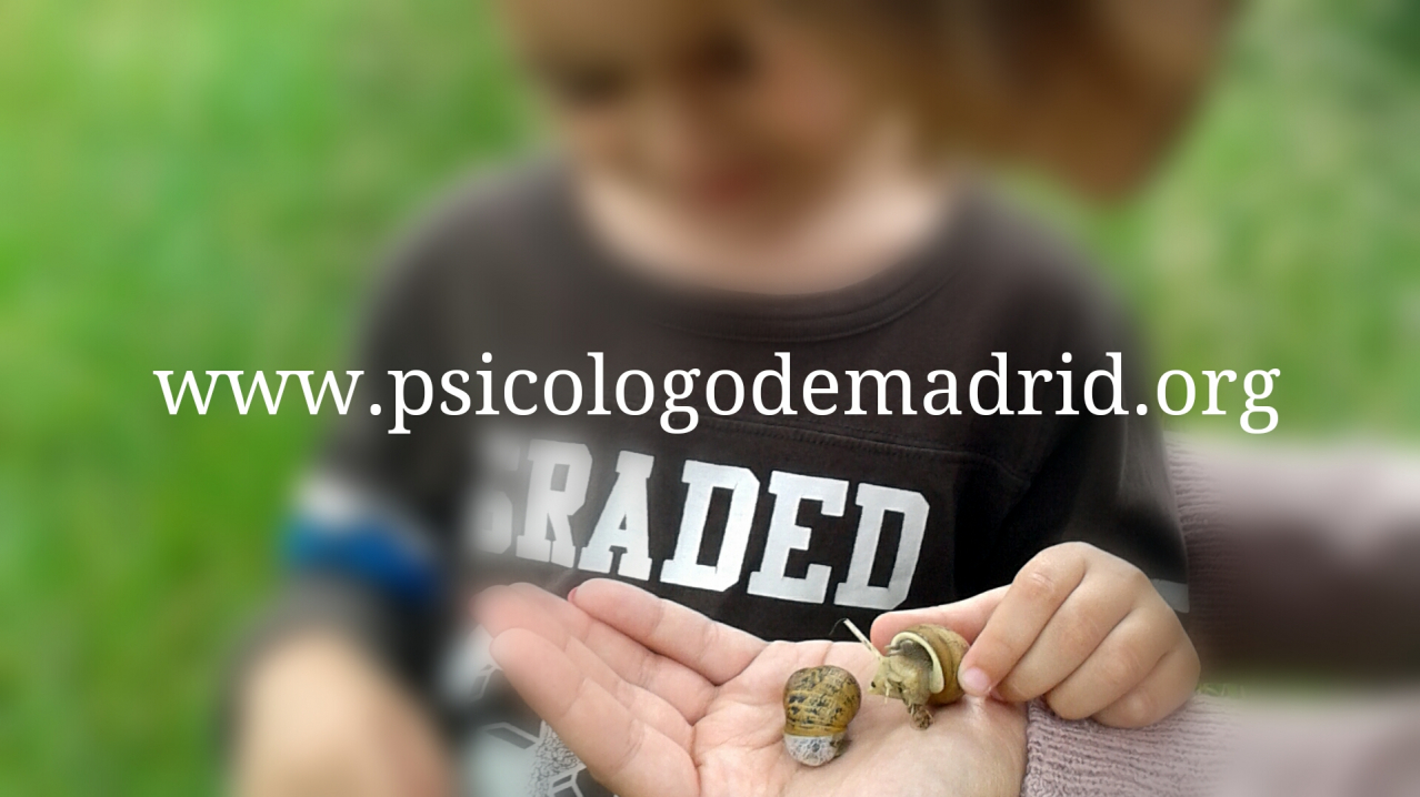 Comparte instantes con los niños para potenciar su desarrollo. Tips para favorecer el crecimiento de los hijos. Psicólogo especializado en terapia infantil y escuela de padres en Madrid, Puerta de Hierro, Moncloa, Las Rozas, Torrelodones