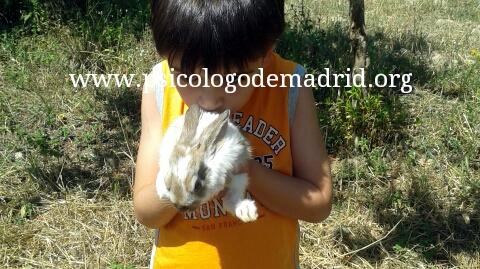 Mascotas y niños. ¿Puede ser beneficioso tener mascota en casa habiendo niños? Descubre las ventajas de que animales y niños compartan hogar