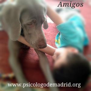 Tener mascota en casa puede ser altamente beneficioso para los niños. Descúbrelo en el nuevo post de www.psicologodemadrid.org