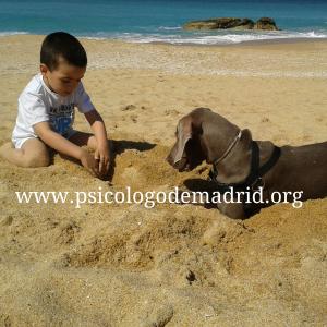 Una mascota puede ser un estupendo compañero de juegos para los niños. En www.psicologodemadrid.org te explicamos los beneficios de tener mascota.