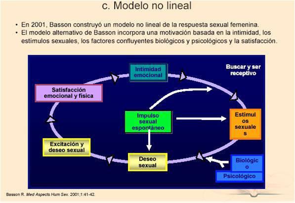 El modelo de deseo sexual femenino y masculino difieren. Si tienes dificultades con tu sexualidad ven a psicologodemadrid.org y te ayudaremos a superarlas