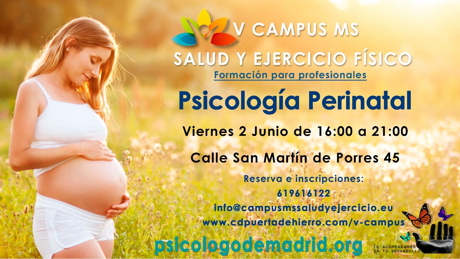 curso de psicologia perinatal para profesionales de la salud que trabajen con mujeres madre embarazadas